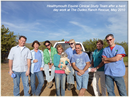Afternoon Equine Clinical Trial Team