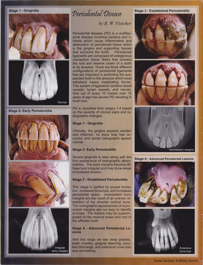 Periodontal Disease by B.W. Fletcher, page 1